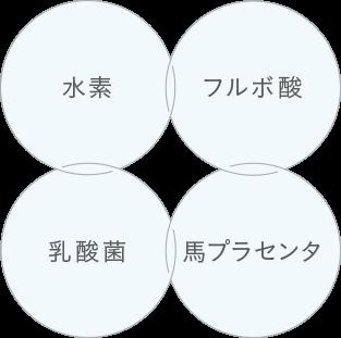 水素・フルボ酸・乳酸菌・馬プラセンタ配合